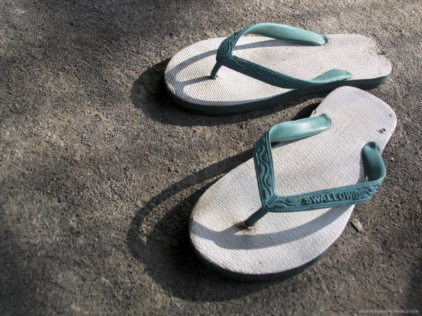 sandal jepit swallow