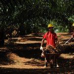 Partisipasi KORINDO Dalam Pembangunan Daerah Perbatasan dan Pedalaman Indonesia