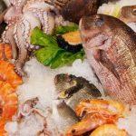 Mengapa Kelaparan Balita Masih Menghantui Di Negeri Bahari