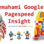 Panduan Cara Menggunakan Hasil Analisis Google PageSpeed Insight