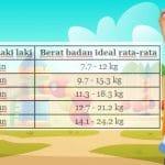 Tabel Berat Badan Anak Laki laki Menurut WHO