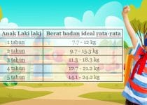 tabel berat badan anak laki laki ideal menurut who
